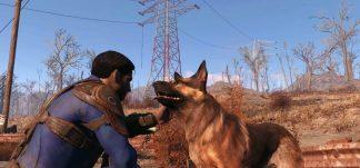 Albóndiga de Fallout 4 ha fallecido
